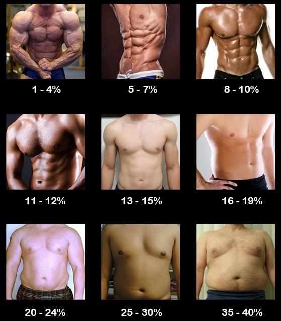 出典:http://www.muscleforlife.com